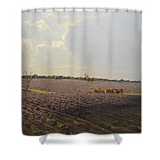 The Land Shower Curtain