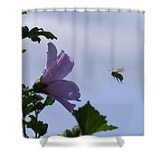 The Landing Strip Shower Curtain