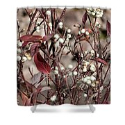 The Last Berries Shower Curtain