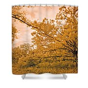 The Last Great Battle... Shower Curtain