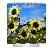 The Last Of Summer Shower Curtain