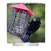 The Last Of The Suet Shower Curtain