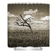 The Last One Standing - Sepia Shower Curtain