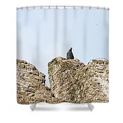The Last Toll Taker Shower Curtain