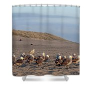 The Layover Shower Curtain