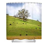 The Lazy Days Of Spring Shower Curtain