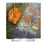 The Leaf And The Reflections Shower Curtain