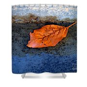 The Leaf On The Stairs Shower Curtain