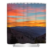 The Leaves Are Gone But The Beauty Is There. Shower Curtain