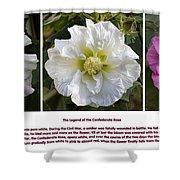 The Legend Of The Confederate Rose Shower Curtain