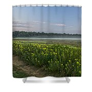 The Less Traveled Path Shower Curtain