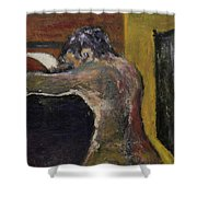 The Letter Receiver Shower Curtain