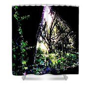 The Light At The End Of The Triangle Shower Curtain by Eikoni Images