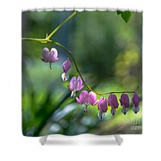 The Light In Our Bleeding Hearts Shower Curtain