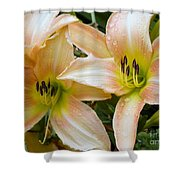 The Lillies Have It Shower Curtain