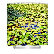 The Lily Pond #2 Shower Curtain
