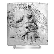 The Lion Shower Curtain