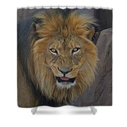 The Lion Dry Brushed Shower Curtain