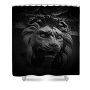 The Lion Gate Shower Curtain