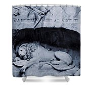 The Lion Of Lucerne Shower Curtain