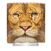 The Lion Roar Of Freedom Shower Curtain