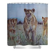 The Lions Of Africa 1 Shower Curtain