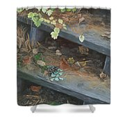 The Little Pine Cone Shower Curtain