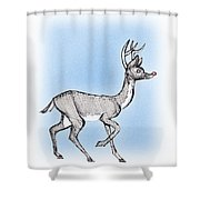 The Little Reindeer  Shower Curtain