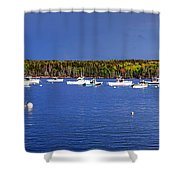 The Lobstering Armada Shower Curtain