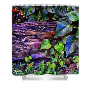 The Log In The Woods  Shower Curtain