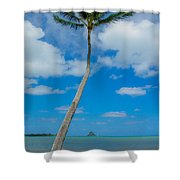 The Lone Palm Shower Curtain