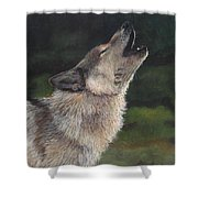 The Lone Wolf Shower Curtain