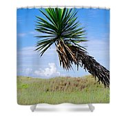 The Lone Yucca Shower Curtain