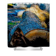The Lonely Log Shower Curtain