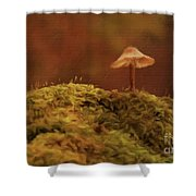 The Lonely Mushroom Shower Curtain