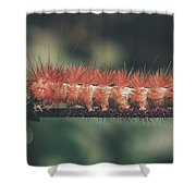 The Long Stride Shower Curtain
