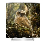 The Look Of Innocence Shower Curtain