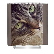 The Look Of Love Shower Curtain
