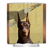 Dobermans..the Look Of The Eagle Shower Curtain