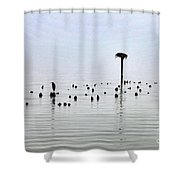 The Loon Guard Shower Curtain