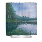 The Loop Shower Curtain