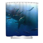 The Lord Of The Ocean Shower Curtain