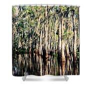 The Louisiana Bayou Shower Curtain