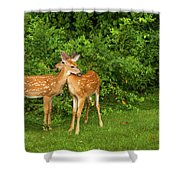 The Love Of Siblings Shower Curtain