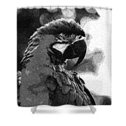 The Macaw Shower Curtain