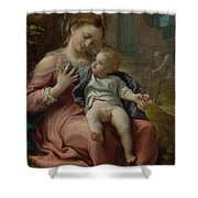 The Madonna Of The Basket Shower Curtain