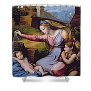 The Madonna Of The Veil Shower Curtain