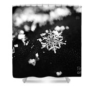 The Magic In A Snowflake Shower Curtain