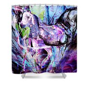 The Magic Of Horses Shower Curtain