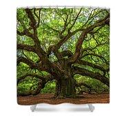 The Magical Angel Oak Tree Panorama  Shower Curtain